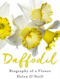 Daffodil - Biography of a Flower
